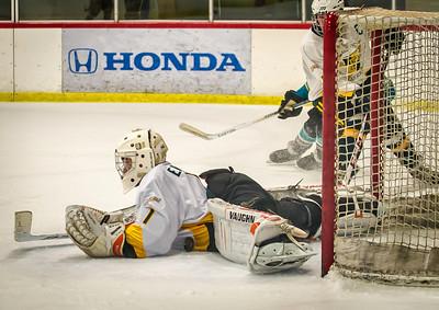 Edison vs Corona Ice Hockey-091
