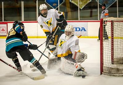 Edison vs Corona Ice Hockey-060