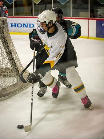 Edison vs Corona Ice Hockey-019
