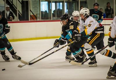 Edison vs Corona Ice Hockey-099