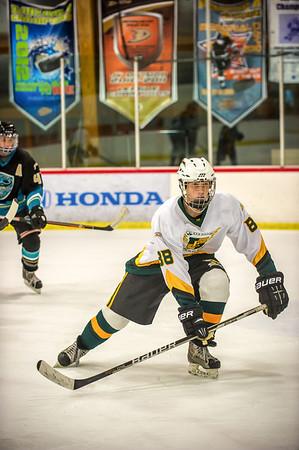Edison vs Corona Ice Hockey-046-Edit
