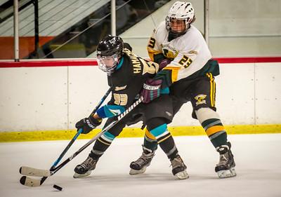 Edison vs Corona Ice Hockey-114