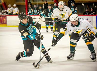 Edison vs Corona Ice Hockey-078