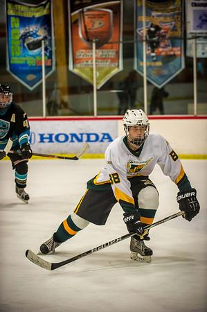 Edison vs Corona Ice Hockey-046
