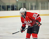 Baldwinsville Bees Mike Schneid (20) in Section III Boys Ice Hockey at Cicero Twin Rinks in Cicero, New York on Friday, January 6, 2012. Fayetteville-Manlius  won 4-2.