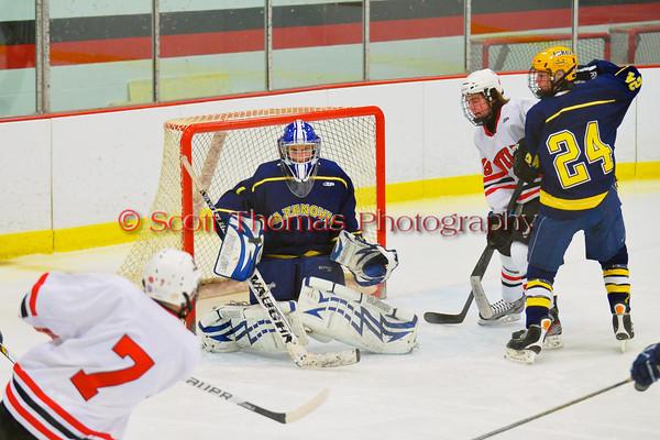 Ice Hockey 2013
