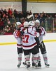 Baldwinsville Bees celebrate Ryan Gebhardt's (20) goal against the Ithaca Little Red during the NYSPHSAA Ice Hockey Championship Regional Playoff game at The Rink in Ithaca, New York on Saturday, March 7, 2015.  Baldwinsville won 2-1.