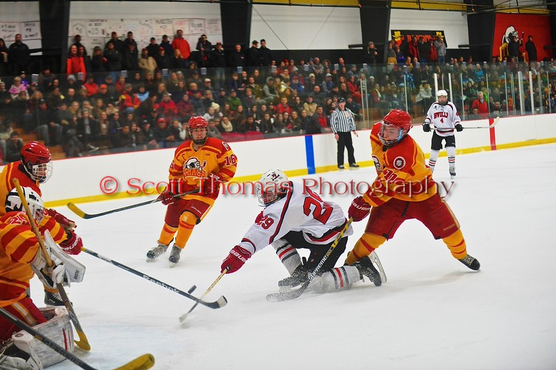Baldwinsville Bees Matt Abbott (29) gets checked by an Ithaca Little Red defender in a NYSPHSAA Ice Hockey Championship Regional Playoff game at The Rink in Ithaca, New York on Saturday, March 7, 2015.  Baldwinsville won 2-1..