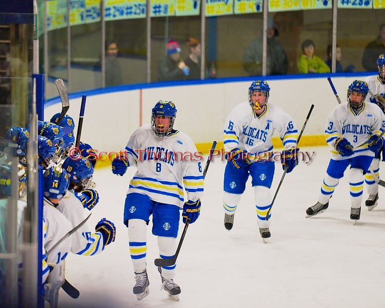 West Genesee Wildcats Ryan McDonald (8) celebrates his goal against the Baldwinsville Bees at Shove Park in Camillus, New York on Friday, January 9, 2015. Game ended in a 3-3 tie.