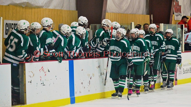 Fayetteville-Manlius Hornets celebrate a goal against the Baldwinsville Bees at the Greater Baldwinsville Ice Arena in Baldwinsville, New York on Tuesday January 6, 2015.  Baldwinsville won 6-1.