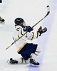 Skaneateles Lakers Raymond Falso (15) celebrates his goal against the Williamsville East Flames in NYSPHSAA Division II Boys Hockey Championships at the Utica Memorial Auditorium n Utica, New York on Sunday, March 15, 2015.  Skaneateles won 5-2.