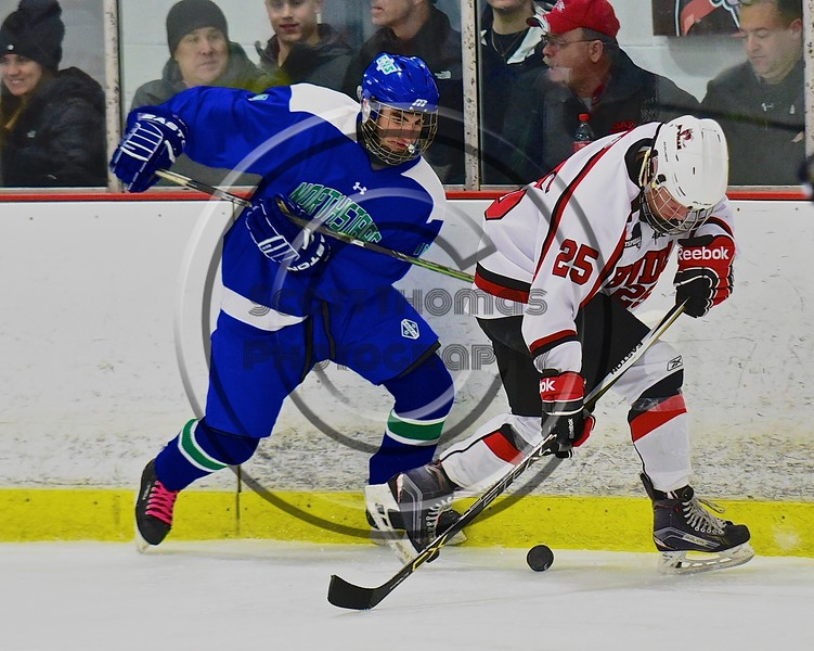 Baldwinsville Bees Andrew Starrantino (25) going after a loose puck along the boards against the Cicero/North Syracuse Northstars at the Lysander Ice Arena in Baldwinsville, New York on Monday February 8, 2016. Cicero/North Syracuse won 2-1.