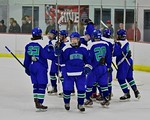 Cicero/North Syracuse Northstars players celebrate a win over the Baldwinsville Bees at the Lysander Ice Arena in Baldwinsville, New York on Monday February 8, 2016. Cicero/North Syracuse wo ...