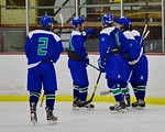 Cicero/North Syracuse Northstars players celebrate a goal against the Baldwinsville Bees at the Lysander Ice Arena in Baldwinsville, New York on Monday February 8, 2016. Cicero/North Syracus ...