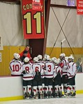 Baldwinsville Bees huddle up before the start of the second period against the Fayetteville-Manlius Hornets at the Lysander Ice Arena in a Section III Division I Boys Hockey Playoff game at  ...