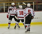 Baldwinsville Bees celebrate a goal by Charlie Bertrand (15) against Fayetteville-Manlius Hornets at the Lysander Ice Arena in a Section III Division I Boys Hockey Playoff game at Baldwinsvi ...