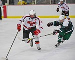 Baldwinsville Bees Charlie Bertrand (15) skates with the puck against past Fayetteville-Manlius Hornets Karl Farber (12) at the Lysander Ice Arena in a Section III Division I Boys Hockey Pla ...