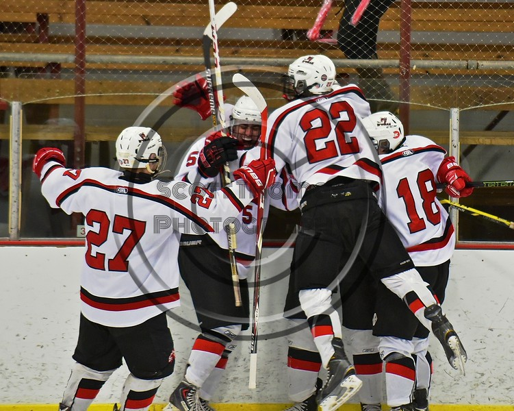 Baldwinsville Bees celebrate a goal by Charlie Bertrand (15) against Fayetteville-Manlius Hornets at the Lysander Ice Arena in a Section III Division I Boys Hockey Playoff game at Baldwinsville, New York on Thursday February 18, 2016.  Baldwinsville won 5-0.
