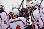 Baldwinsville Bees celebrate the goal by JP Clappa (4) against the Fayetteville-Manlius Hornets at the Lysander Ice Arena in a Section III Division I Boys Hockey Playoff game at Baldwinsvill ...
