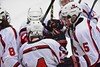 Baldwinsville Bees celebrate the goal by JP Clappa (4) against the Fayetteville-Manlius Hornets at the Lysander Ice Arena in a Section III Division I Boys Hockey Playoff game at Baldwinsville, New York on Thursday February 18, 2016.  Baldwinsville won 5-0.
