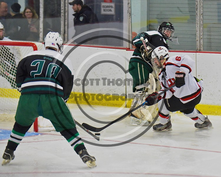 Baldwinsville Bees Josh Racha (6) steal the puck from Fayetteville-Manlius Hornets goalie James Kaffenberer (30) at the Lysander Ice Arena in a Section III Division I Boys Hockey Playoff game at Baldwinsville, New York on Thursday February 18, 2016.  Baldwinsville won 5-0.