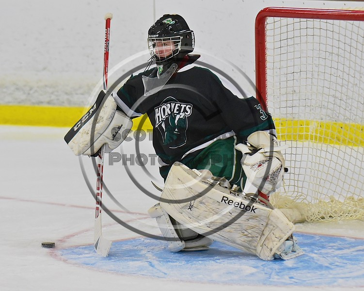 Fayetteville-Manlius Hornets goalie James Kaffenberger (30) makes a save against the Baldwinsville Bees at the Lysander Ice Arena in a Section III Division I Boys Hockey Playoff game at Baldwinsville, New York on Thursday February 18, 2016.  Baldwinsville won 5-0.