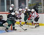 Baldwinsville Bees Matt Monaco (22) centers the puck against the Fayetteville-Manlius Hornets at the Lysander Ice Arena in a Section III Division I Boys Hockey Playoff game at Baldwinsville, ...