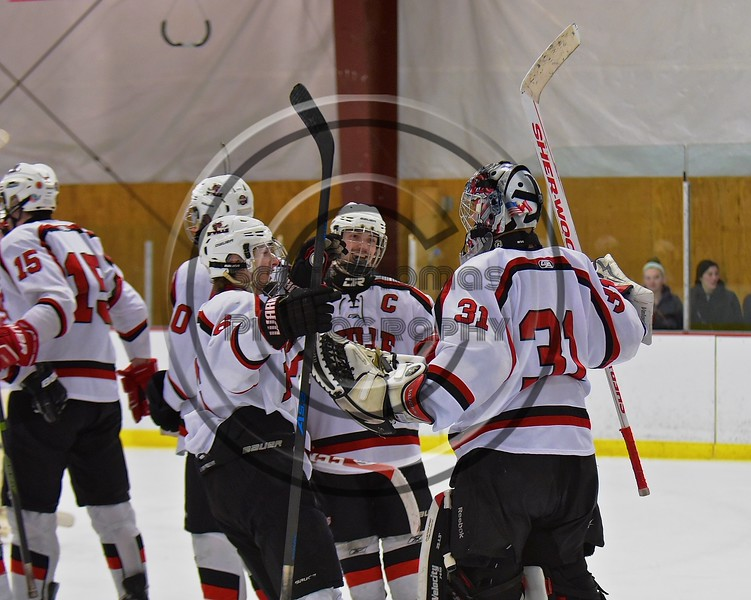 Baldwinsville Bees players celebrate a win over the Fayetteville-Manlius Hornets at the Lysander Ice Arena in a Section III Division I Boys Hockey Playoff game at Baldwinsville, New York on Thursday February 18, 2016.  Baldwinsville won 5-0.