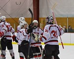 Baldwinsville Bees players celebrate a win over the Fayetteville-Manlius Hornets at the Lysander Ice Arena in a Section III Division I Boys Hockey Playoff game at Baldwinsville, New York on  ...