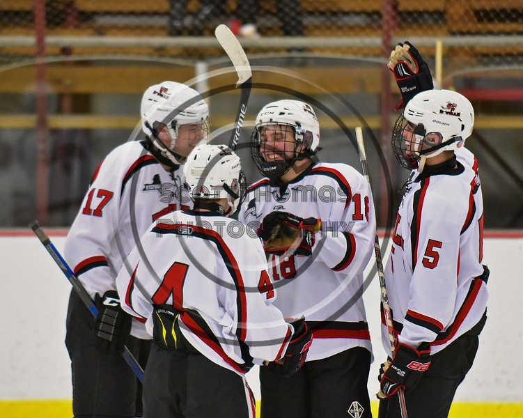 Baldwinsville Bees congratulate Garrett Gray (18) on his goal against the Fayetteville-Manlius Hornets at the Lysander Ice Arena in a Section III Division I Boys Hockey Playoff game at Baldwinsville, New York on Thursday February 18, 2016.  Baldwinsville won 5-0.