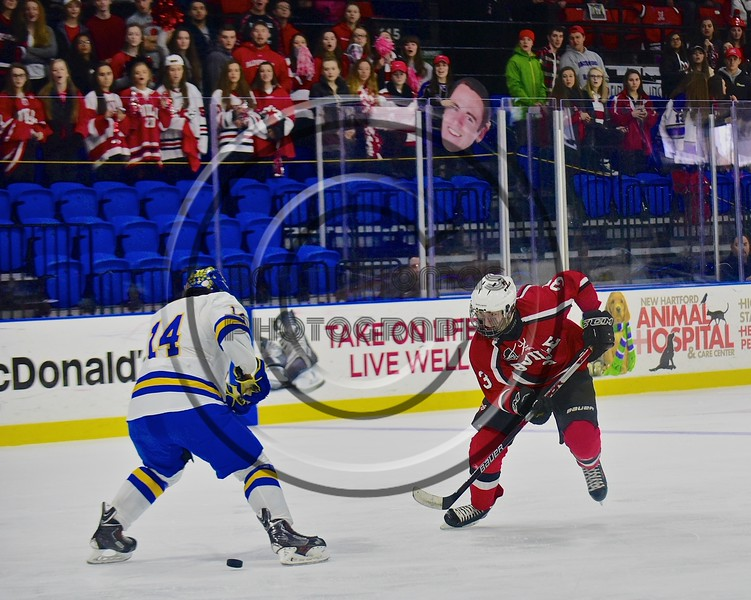 Baldwinsville Bees Alex Paterson-Jones (3) makes a move on West Genesee Wildcats Garrett Schnorr (14) in the Section III, Division I Championship game in Boys Ice Hockey at the Utica Auditorium on Sunday, February 28, 2016. West Genesee won 1-0.
