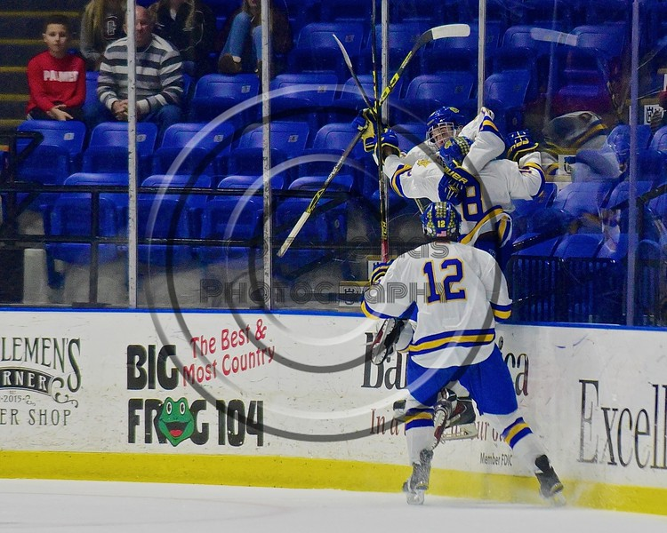 West Genesee Wildcats Ryan McDonald (8) and Matthew McDonald (12) celebrate the goal by Jeffrey Kopek (10) against the Baldwinsville Bees in the Section III, Division I Championship game in Boys Ice Hockey at the Utica Auditorium on Sunday, February 28, 2016. West Genesee won 1-0.