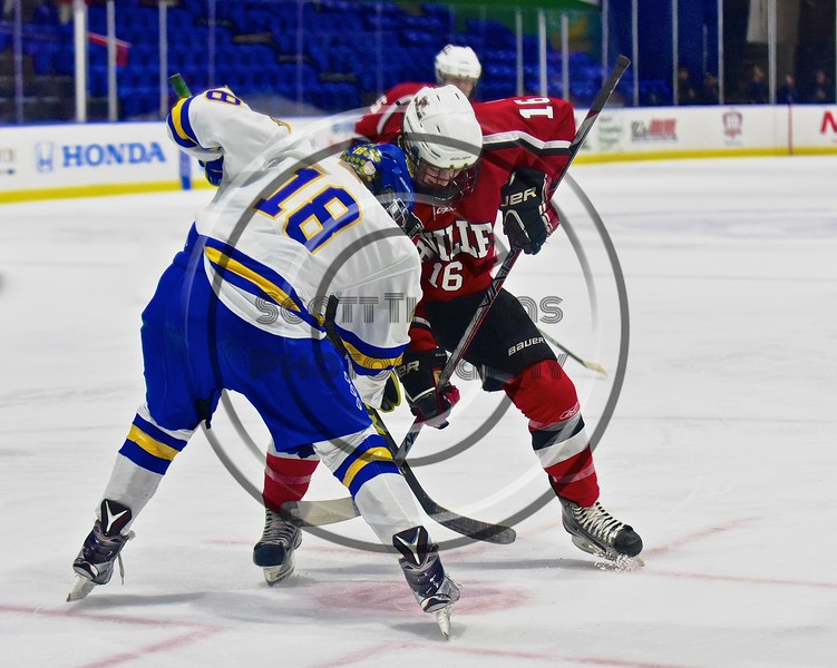 Baldwinsville Bees Carson Hayes (16) faces off with West Genesee Wildcats Patrick McDonald (18) in the Section III, Division I Championship game in Boys Ice Hockey at the Utica Auditorium on Sunday, February 28, 2016. West Genesee won 1-0.