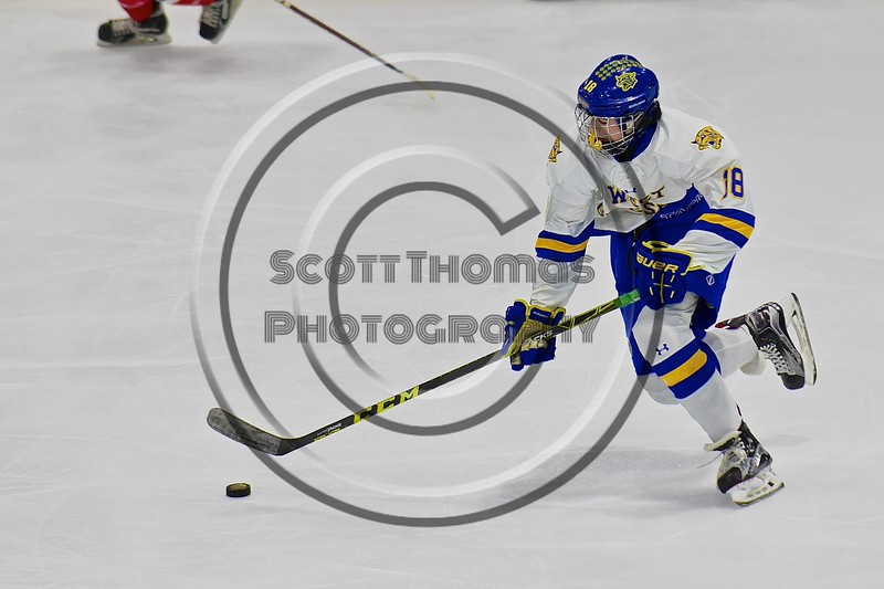West Genesee Wildcats Patrick McDonald (18) skating with the puck against the Baldwinsville Bees in the Section III, Division I Championship game in Boys Ice Hockey at the Utica Auditorium on Sunday, February 28, 2016. West Genesee won 1-0.