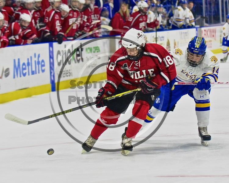 Baldwinsville Bees Garrett Gray (18) protects the puck from West Genesee Wildcats Garrett Schnorr (14) in the Section III, Division I Championship game in Boys Ice Hockey at the Utica Auditorium on Sunday, February 28, 2016. West Genesee won 1-0.