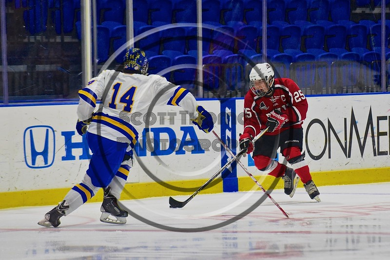 Baldwinsville Bees Andrew Starrantino (25) skating with the puck against at West Genesee Wildcats Garrett Schnorr (14) in the Section III, Division I Championship game in Boys Ice Hockey at the Utica Auditorium on Sunday, February 28, 2016. West Genesee won 1-0.
