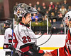 Syracuse Cougars goalie Jake Polacek (29) shakes hands with a Baldwinsville Bees player in a Section III, Division I Playoff game at the Meachem Ice Rink in Syracuse, New York on Wednesday, February 22, 2017. Syracuse won 3-2 in overtime.