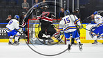 West Genesee Wildcats Jay Considine (3) scores in overtime to defeat the Syracuse Cougars in the Section III, Division I Boys Ice Hockey Championship game at the War Memorial Arena in Syracu ...
