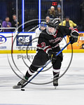 Syracuse Cougars Ryan Eccles (23) with the puck against the West Genesee Wildcats in the Section III, Division I Boys Ice Hockey Championship game at the War Memorial Arena in Syracuse, New  ...