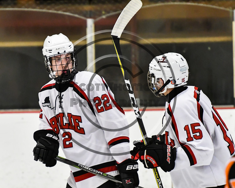 Baldwinsville Bees Mark Monaco (22) gets congratulated for his goal against the Rome Free Academy Black Knights by Michael Carni (15) in NYSPHSAA Section III Boys Ice hockey action at the Lysander Ice Arena in Baldwinsville, New York on Tuesday, December 5, 2017. Baldwinsville won 5-0.