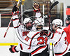 Baldwinsville Bees Brad O'Neill (39) celebrates a goal with Cameron Sweeney (21) and Braden Lynch (23) against host the Fulton Red Raiders in NYSPHSAA Section III Boys Ice hockey action at the Lysander Ice Arena in Baldwinsville, New York on Tuesday, January 9, 2018. Baldwinsville won 9-1.
