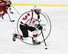 Baldwinsville Bees Jamey Natoli (25) with the puck against the Ithaca Little Red in NYSPHSAA Section III Boys Ice hockey action at the Lysander Ice Arena in Baldwinsville, New York on Friday, February 9, 2018. Ithaca won 1-0.