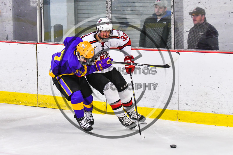 Baldwinsville Bees Christian Treichler (33) battles for the puck with CBA/JD Brothers Seamus Nicholson (17) in NYSPHSAA Section III Boys Ice Hockey action at the Lysander Ice Arena in Baldwinsville, New York on Tuesday, December 18, 2018. Baldwinsville won 3-1.