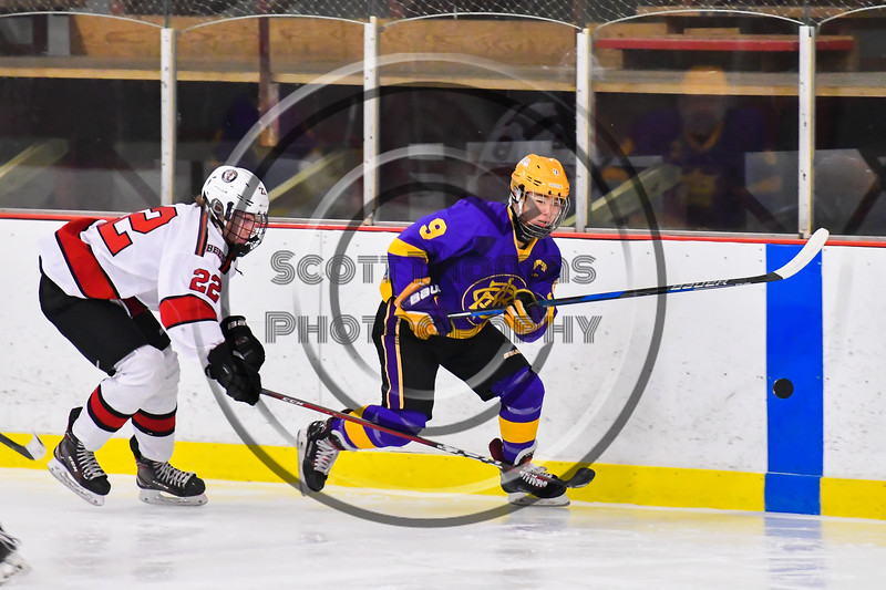Baldwinsville Bees Mark Monaco (22) skating after the puck and CBA/JD Brothers Kodi Dotterer (9) in NYSPHSAA Section III Boys Ice Hockey action at the Lysander Ice Arena in Baldwinsville, New York on Tuesday, December 18, 2018. Baldwinsville won 3-1.