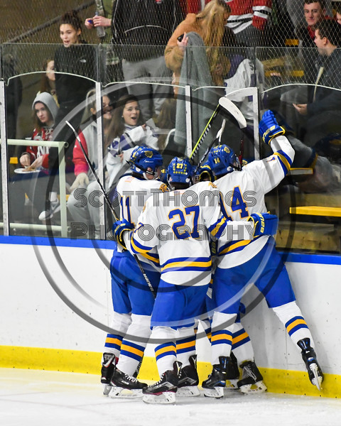 West Genesee Wildcats players celebrate the goal by James Schneid (15) against the Baldwinsville Bees in NYSPHSAA Section III Boys Ice hockey action at Shove Park in Camillus, New York on Tuesday, January 29, 2019. West Genesee won 5-1.