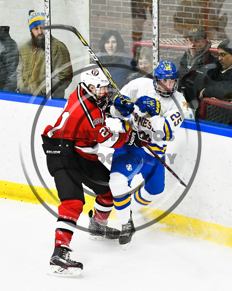 Baldwinsville Bees Cameron Sweeney (21) checks West Genesee Wildcats Chris Kleberg (25) in NYSPHSAA Section III Boys Ice hockey action at Shove Park in Camillus, New York on Tuesday, January 29, 2019. West Genesee won 5-1.