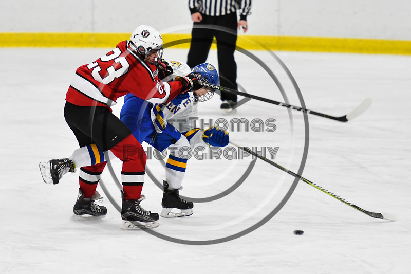 Baldwinsville Bees Braden Lynch (23) checking West Genesee Wildcats Jams Schneid (15) in NYSPHSAA Section III Boys Ice hockey action at Shove Park in Camillus, New York on Tuesday, January 29, 2019. West Genesee won 5-1.