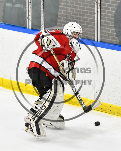 Baldwinsville Bees goalie Bradley O'Neill (30) playing the puck against the West Genesee Wildcats in NYSPHSAA Section III Boys Ice hockey action at Shove Park in Camillus, New York on Tuesday, January 29, 2019. West Genesee won 5-1.
