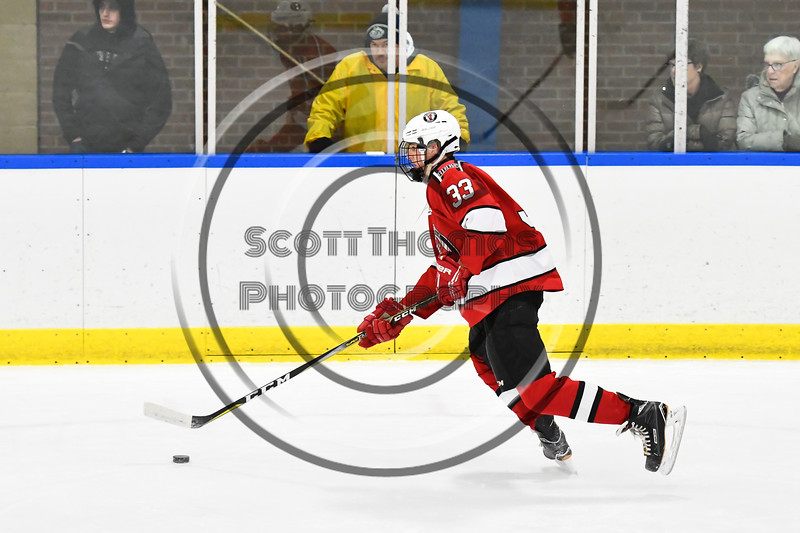 Baldwinsville Bees Christian Treichler (33) with the puck against the West Genesee Wildcats in NYSPHSAA Section III Boys Ice hockey action at Shove Park in Camillus, New York on Tuesday, January 29, 2019. West Genesee won 5-1.