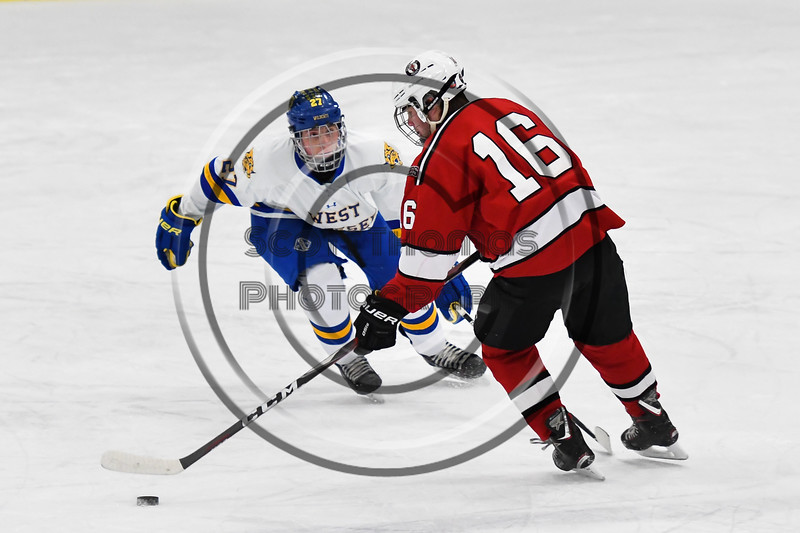West Genesee Wildcats Joe Artini (27) defending against Baldwinsville Bees Luke Hoskin (16) in NYSPHSAA Section III Boys Ice hockey action at Shove Park in Camillus, New York on Tuesday, January 29, 2019. West Genesee won 5-1.